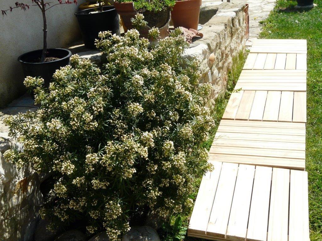 caillebotis robinier faux acacia en kit 50x50kit acheter au meilleur prix. Black Bedroom Furniture Sets. Home Design Ideas